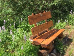 Liberty Woodlands Bench